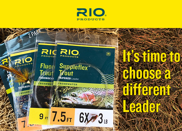 Time To Choose A Different Leader Guide Fly Fishing