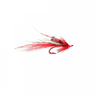 Ally's Shrimp Red P Double