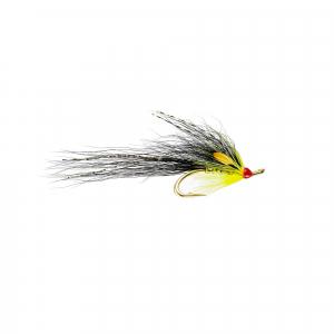 Gledswood Yellow JC P Double