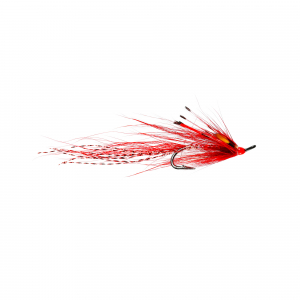 Simply Red Shrimp JC Double