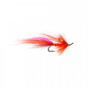 Calvin Shrimp JC Double