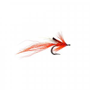 Ally's Shrimp Nordic Double