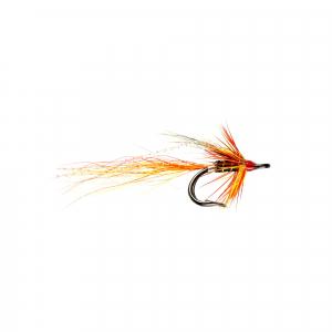 Ally's Cascade Shrimp Nordic Double