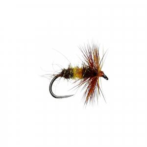 Caperer H/Dry B/L