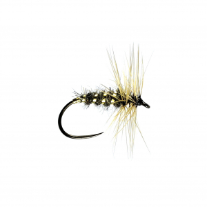 Gold Ribbed Hares Ear H/Dry B/L