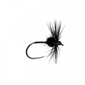 Black Spider H/Dry B/L