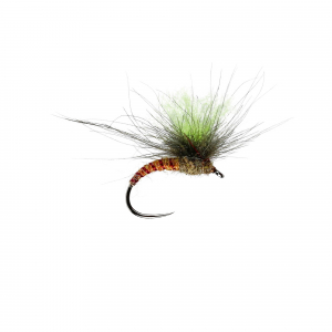 Fussy Spinner W/Dry B/L