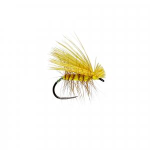 Elkwing Yellow Caddis W/Dry B/L