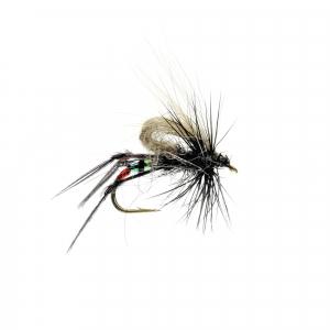 Black Hopper CDC