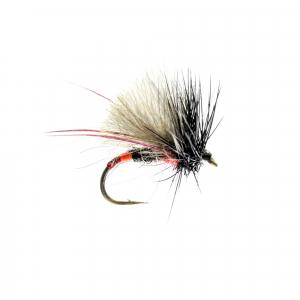 Sweethope Hopper CDC