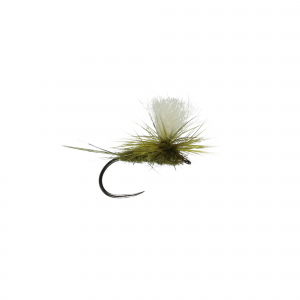 Parachute Large Dark Olive Dry B/L