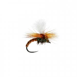 Brown Klink B/L