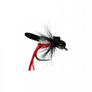 Red legs Hawthorn Foam Dry B/L