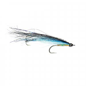 Elver Sea Trout Special
