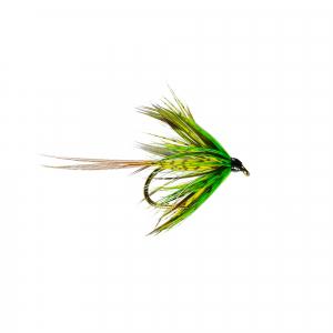 Lough Arrow Olive Mayfly