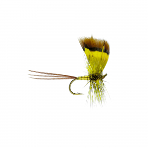 Conn Mayfly Dry
