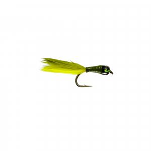 Olive Stalker Bug
