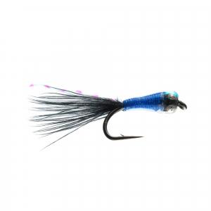 Kingfisher Stalker Bug