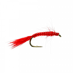 Red Blood Worm (U/W)