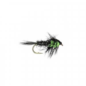 Green Montana (W)