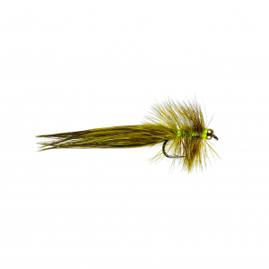 WSW Golden Olive
