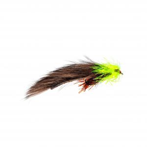 Brown Bear Leech LS