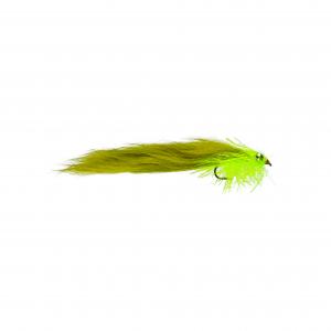 Olive Cat Leech LS