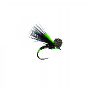 Black Quill Booby B/L