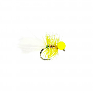 Yellow Dancer Booby B/L
