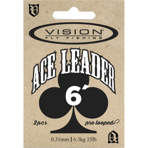 Vision Ace Leaders
