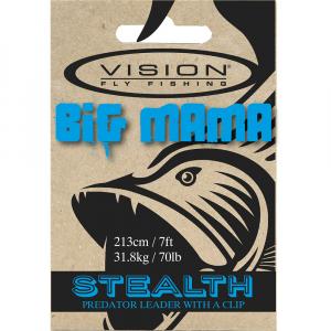 Vision Big Mama Leaders