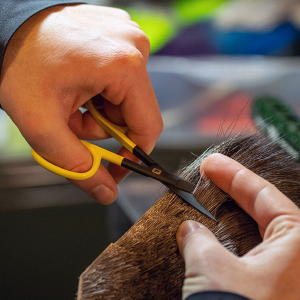 Loon Ergo Hair Scissors
