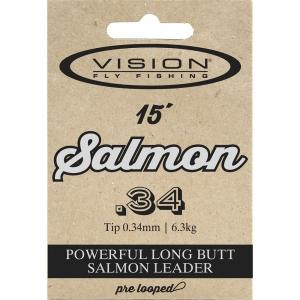 Vision Salmon Leaders