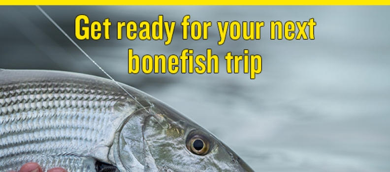 Your Next Bonefish Trip